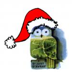 chouette Noël
